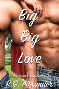 Book Cover: Big Big Love